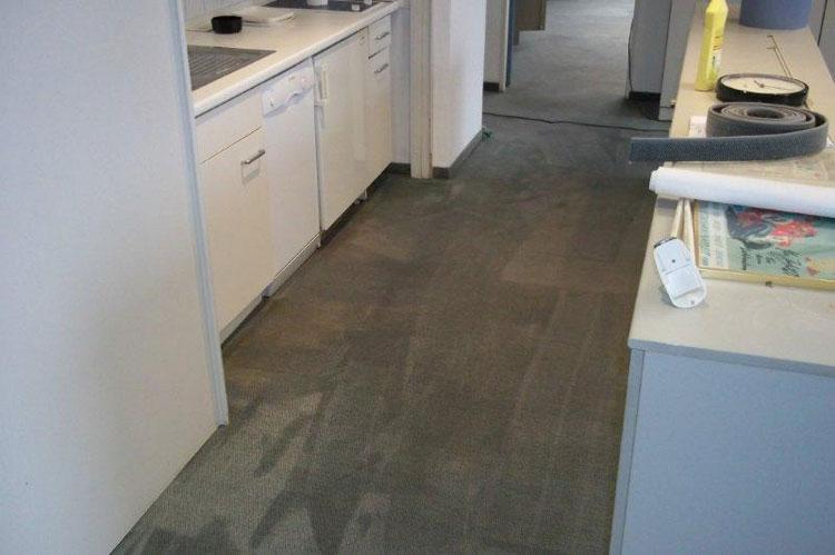 Codexs GmbH – Teppich- und Polsterreinigung vom Profi